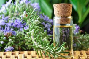 doterra rosemary essential oils
